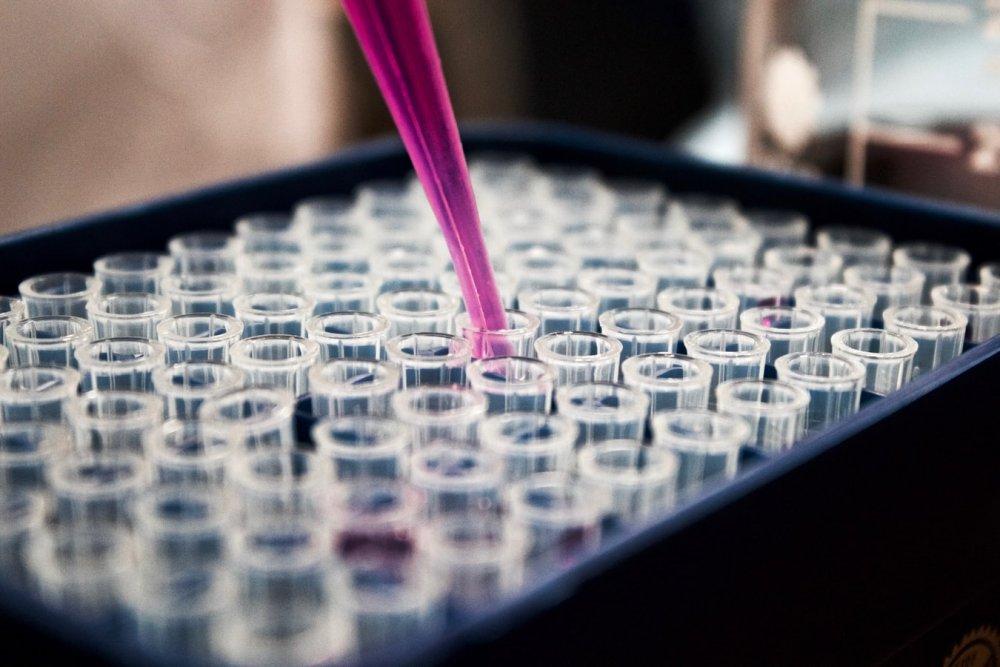 Une région à considérer dans le secteur de la BioTech, Washington DC.