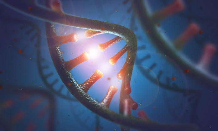 Le chimiste Matthew Disney du Scripps Research contribue à la recherche sur les médicaments ciblant l'ARN et reçoit une bourse du NIH de 11 millions de dollars