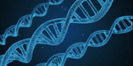 COVID-19 : Pluie de dollars pour le candidat vaccin à ADN d'Inovio et le test sérologique en 5 min de MBio Diagnostics