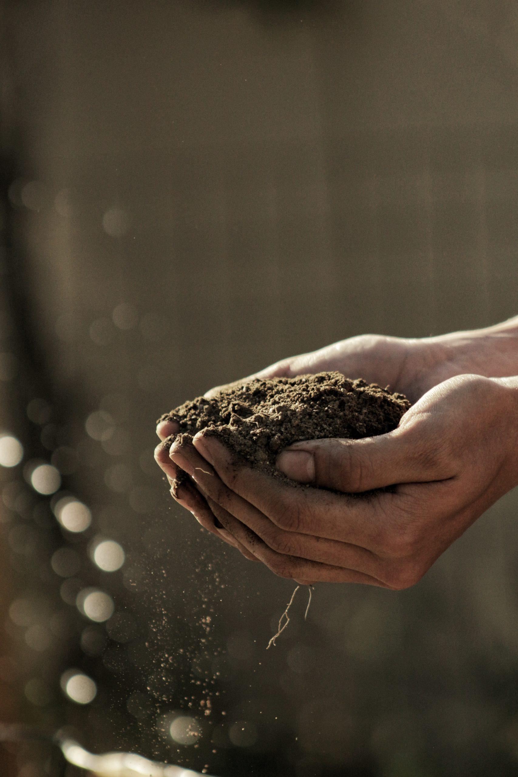 Un projet de loi bipartisan en faveur de la création d'une nouvelle certification carbone à l'USDA