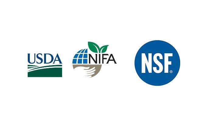 Création d'un nouveau réseau d'instituts de recherche en IA au service de l'innovation agricole