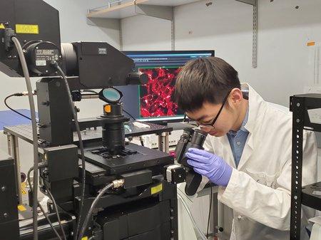 Des chercheurs de Caltech découvrent de nouvelles vulnérabilités métaboliques dans les cellules cancéreuses