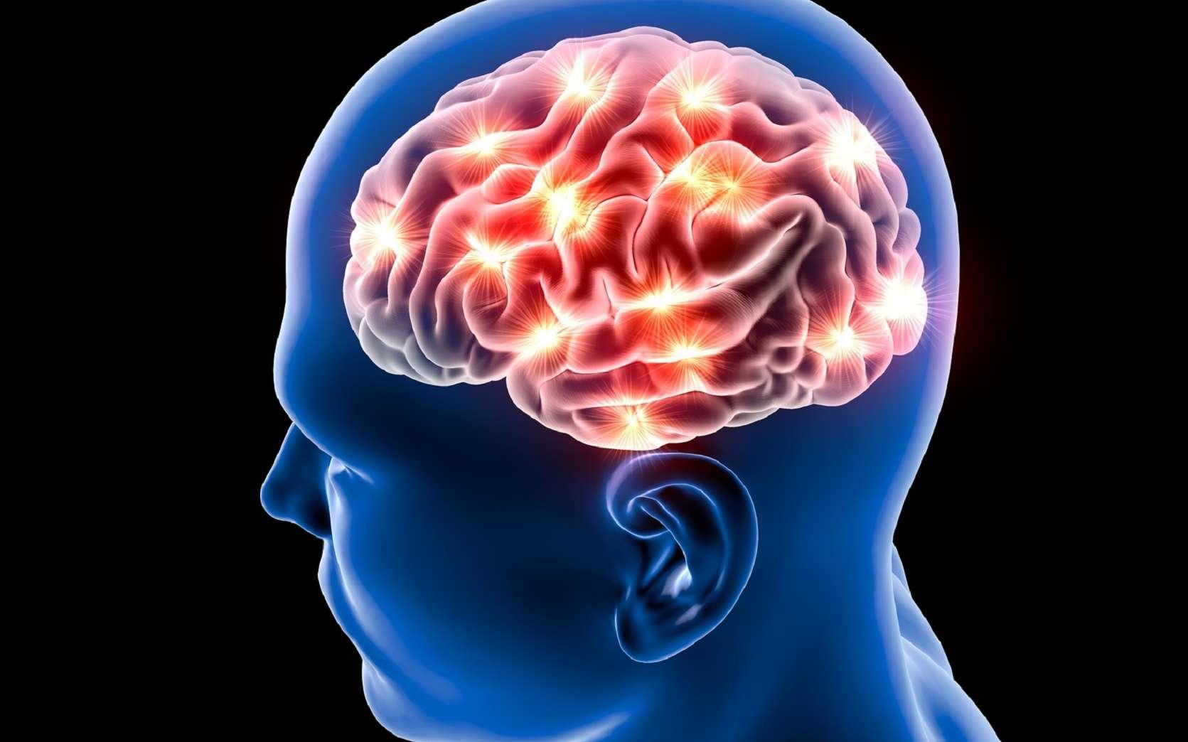 Une nouvelle collaboration de grande envergure entre États-Unis, France et Canada dans le domaine des neurosciences
