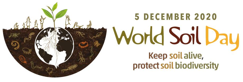 L'antenne nord-américaine de la FAO célèbre la Journée mondiale des sols