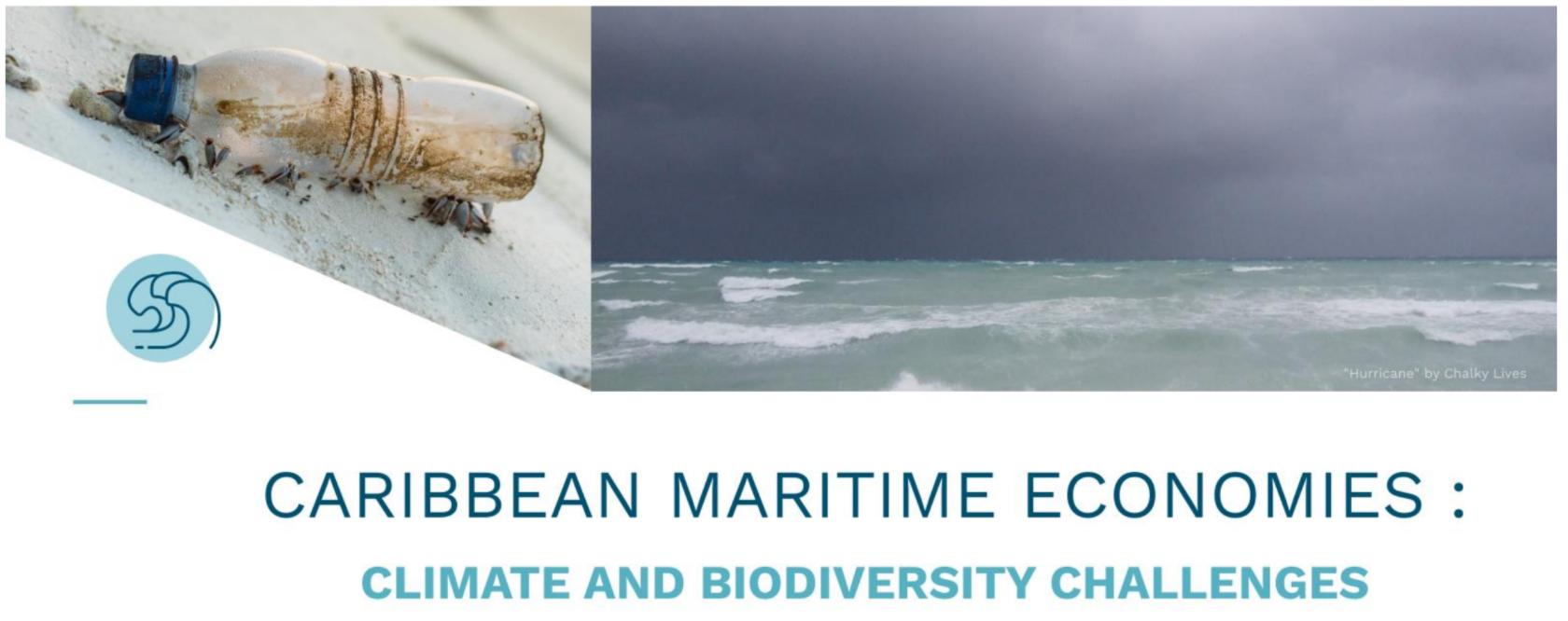 Webinaire : Défis climatiques et écologiques pour l'économie caribéenne.