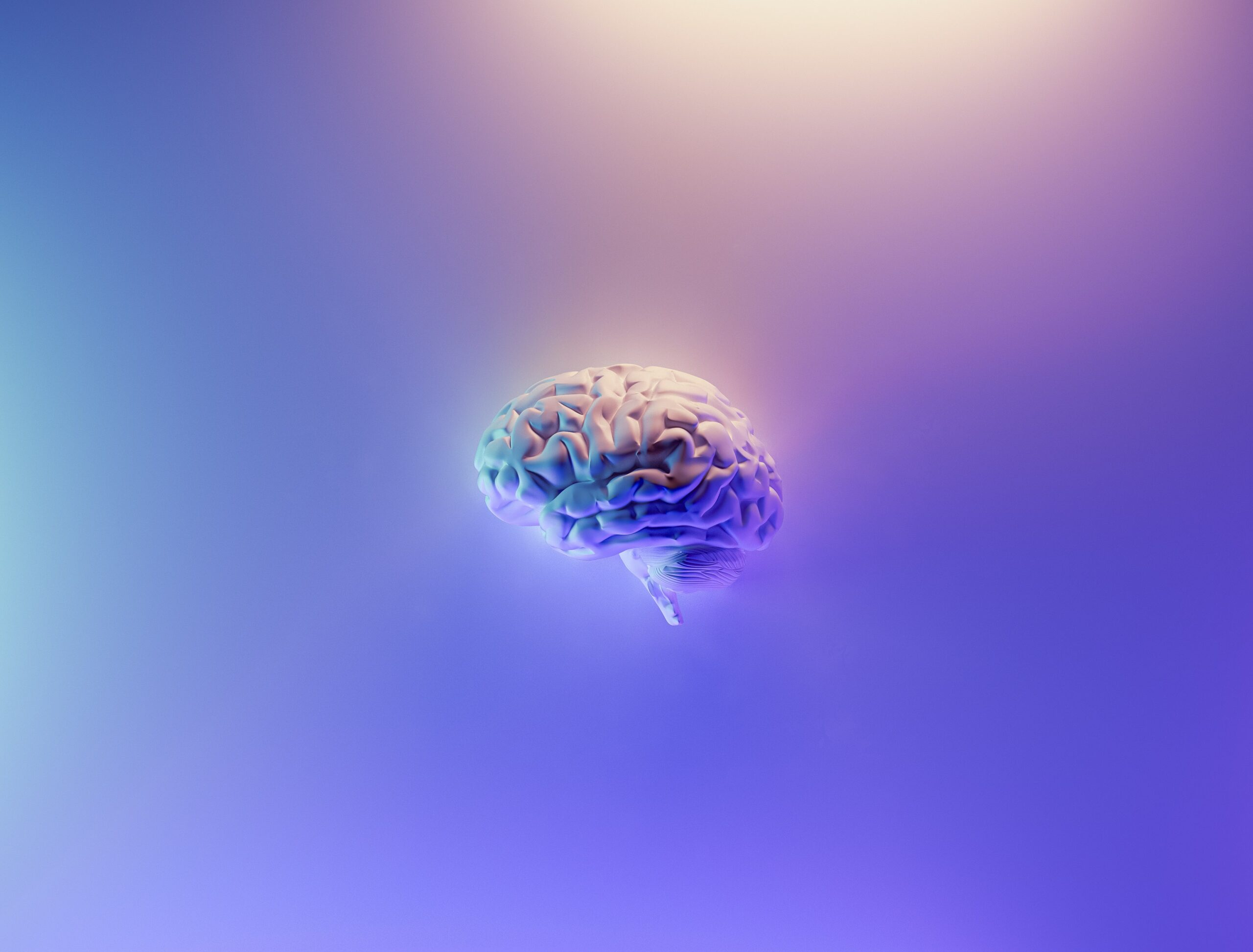 L'interleukine-3 : une nouvelle piste vers un traitement de la maladie d'Alzheimer