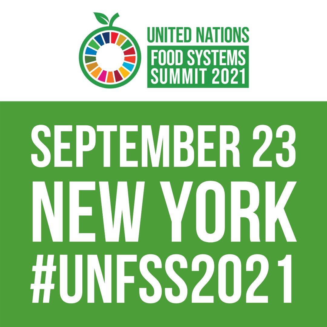 Bilan du Sommet sur les Systèmes Alimentaires des Nations Unies